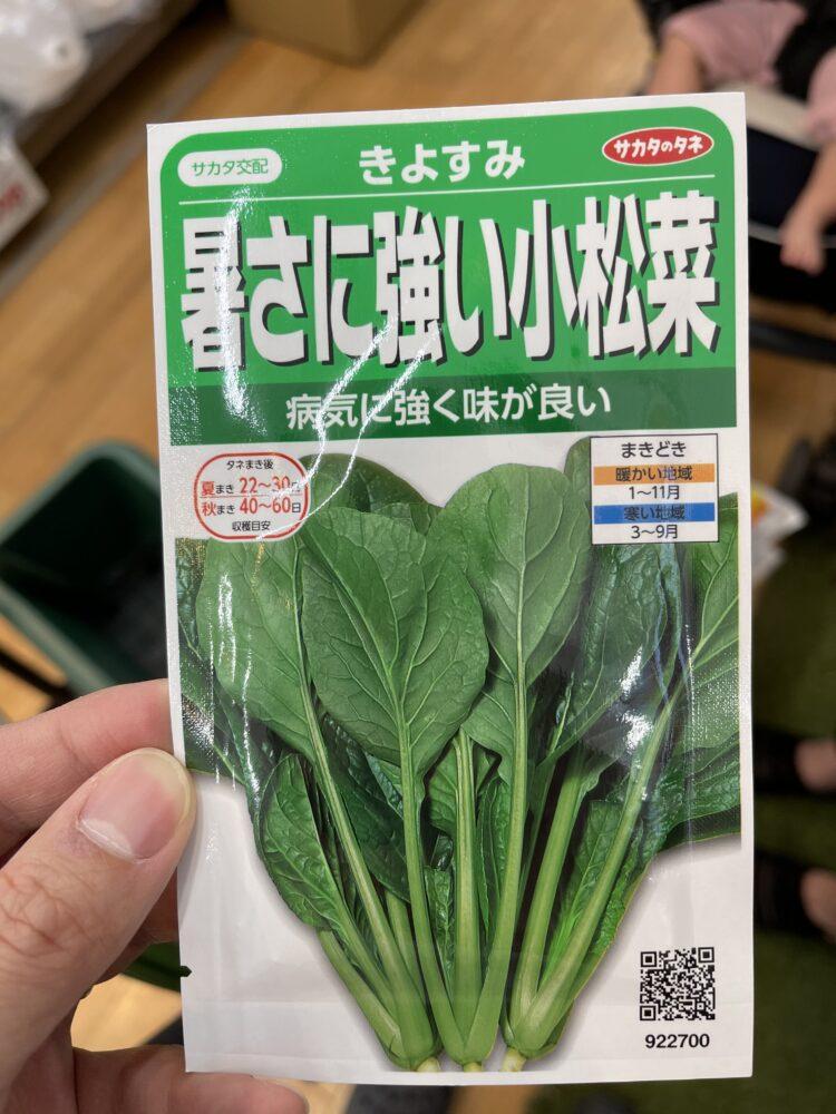 小松菜のタネの画像