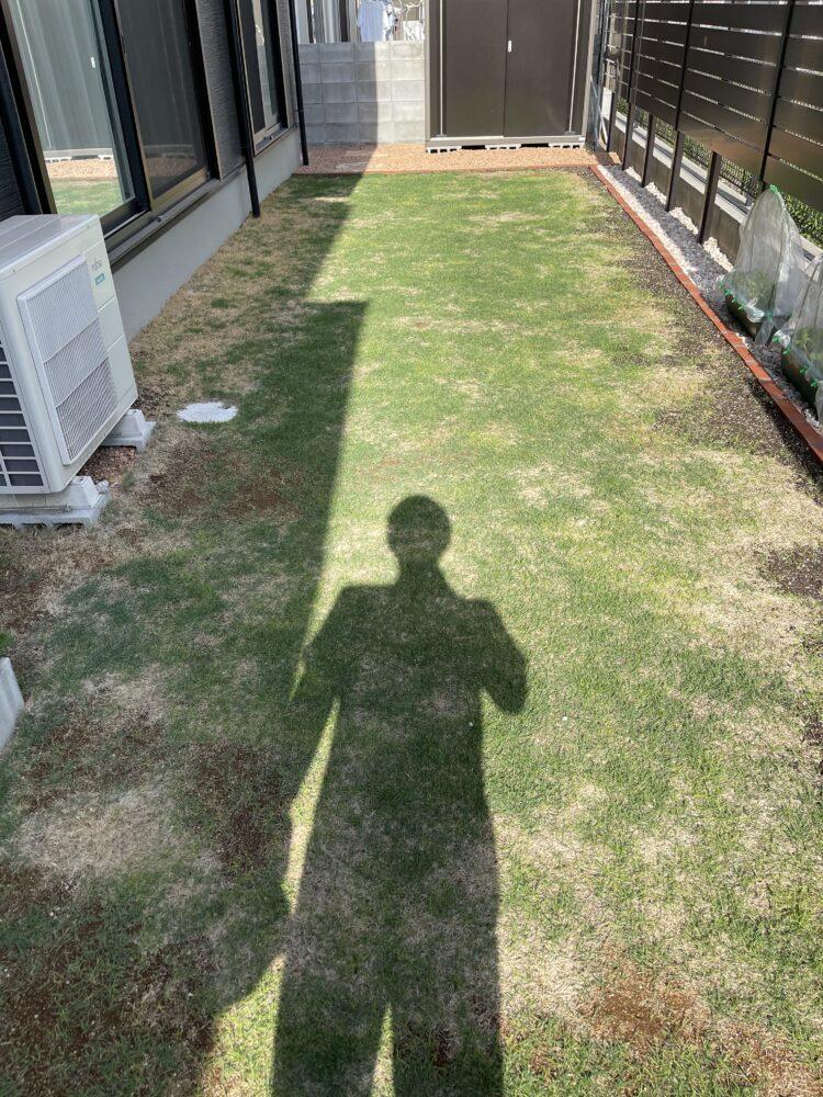 芝生の画像